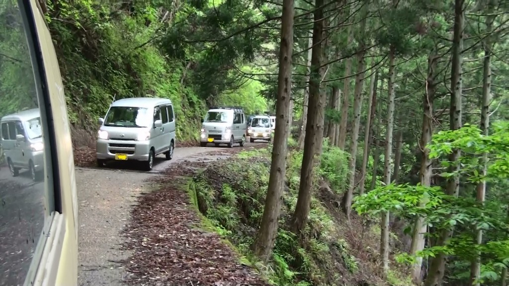 大山林道2